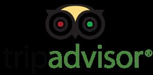 tripadvisor-logo-1728728355.png